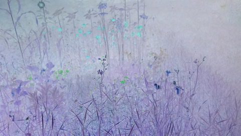 """Wildflowers"" ...Photo Credit: c. Olivia, 2013."